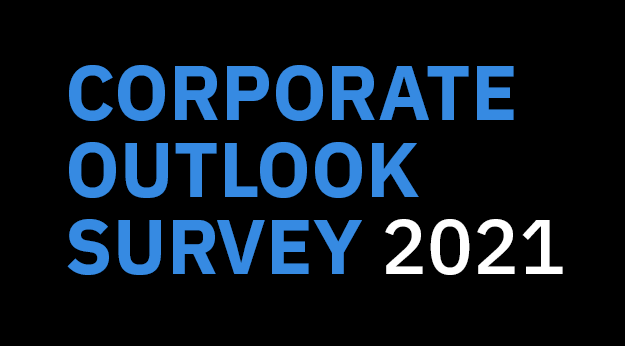 Corporate decision-makers: tell us how you see the world